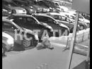 Автомобильный тореадор - молодой человек головой протаранил автомобиль