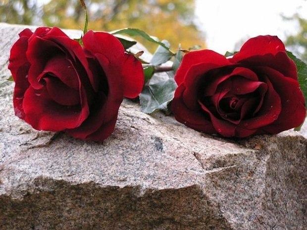 Министерство культуры Тувы выражает глубокие соболезнования депутату Госудумы РФ Ларисе Шойгу в связи с кончиной ее супруга Константина Фламенбаума