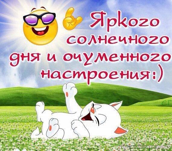 Фото №456239428 со страницы Елены Великовой