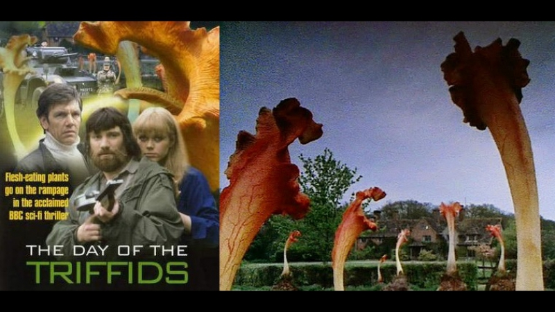 День Триффидов / The Day of the triffids 1981.
