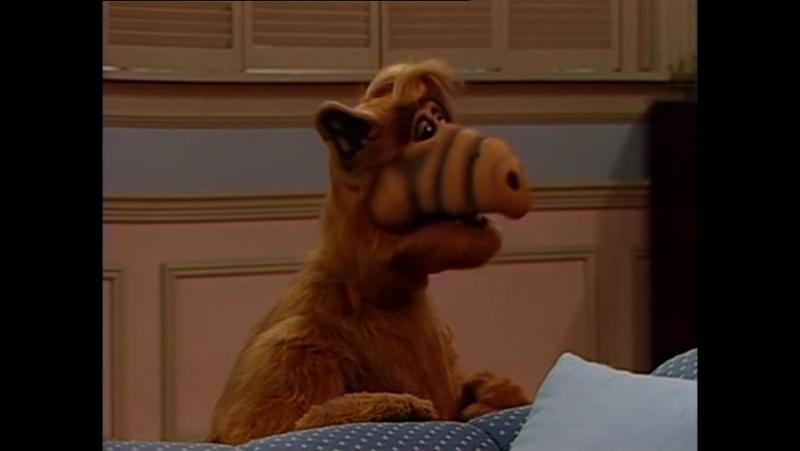 Alf Quote Season 2 Episode 8__Альф и Дороти