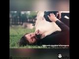 Красивое видео показывающее что каждое животное нуждается в любви?