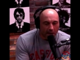 Joe Rogan on Armenians