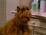 Alf Quote Season 1  Episode 1_Не смотрю