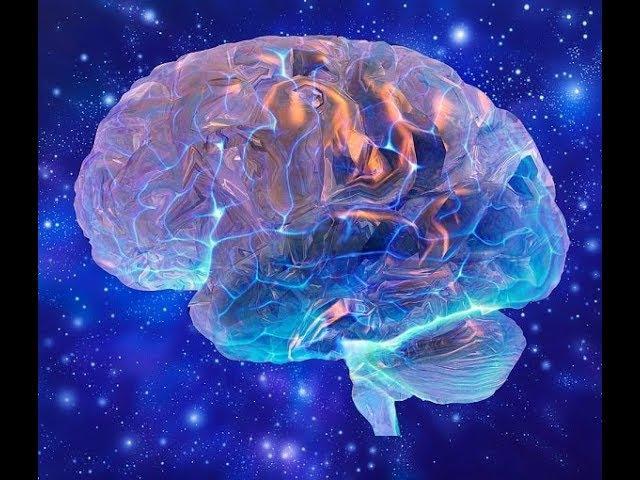 Нейрофизиология пробуждения