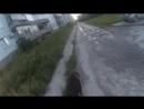 Ночером-утером гуляю собаку. жЫрную