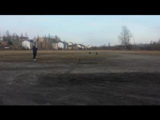 ПРАЙТЕР ДЕКСТЕР КУРСИНГ 2