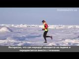 Марафон в Арктике
