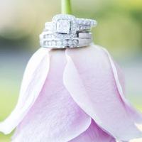 weddingloveinfilm