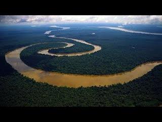 Дикая природа Амазонки. Самая длинная и полноводная река в мире. National geographic 08.11.2016
