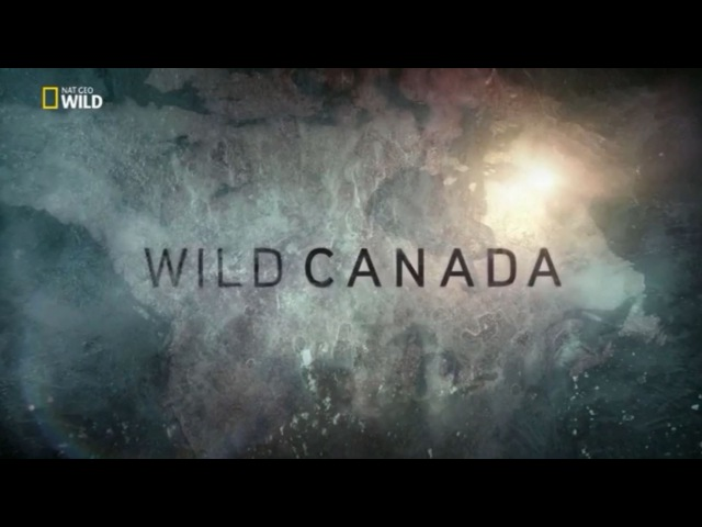 Vahşi Kanada (Belgesel)