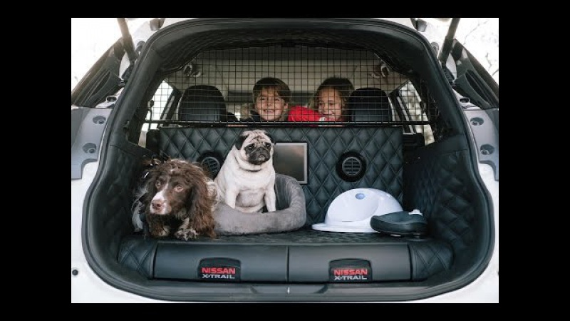 Nissan X Trail 4Dogs Concept | Dog-friendly Car