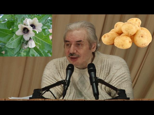 Освободиться от последствий ГМО, цикл замены тканей, картофель, диабет, ананас, банан (Левашов Н.В.)