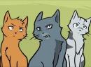 Коты воители Синяя звезда, прикол.