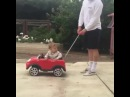 When Your Dog Has a Better Car Than You х5 · coub коуб