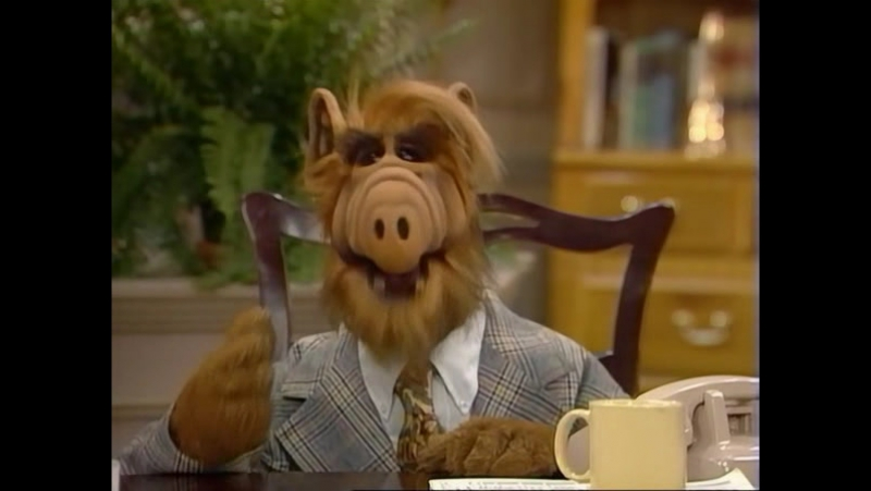Alf Quote Season 1 Episode 17_Альф и Таннеры