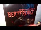 Beatfreakz Somebodys Watching Me