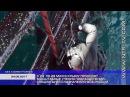 24.05.2017 Боевые пловцы ЦСН ФСБ в ходе учений освободили захваченную буровую платфо