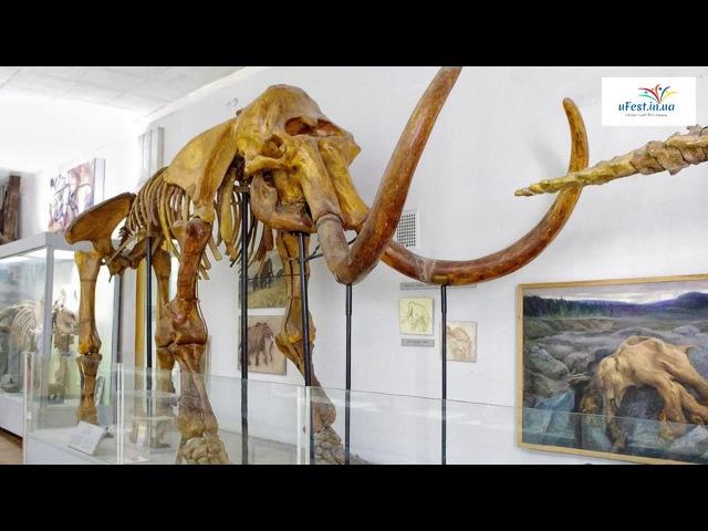 ТОП - 5 найцікавіших музеїв Києва
