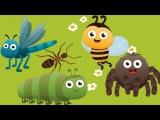 Насекомые для детей. Тайная жизнь насекомых. Мультик для малышей