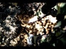 3 Гранатовя варакка добыча камней 2014