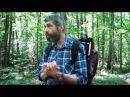 Экскурсия в природно исторический парк Битцевский лес 23 06 2015 Часть 2