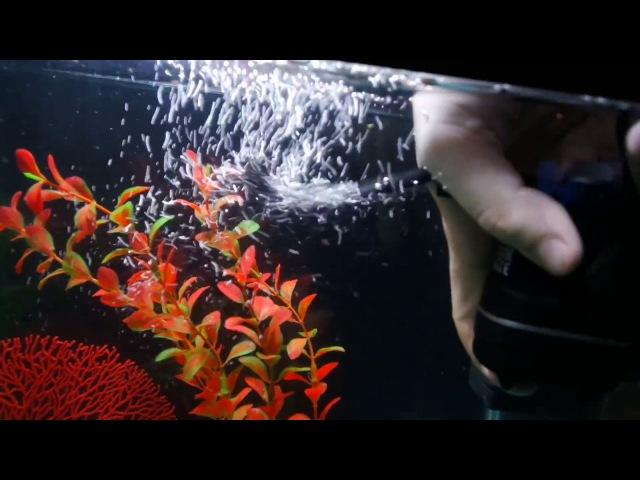 Фильтр для аквариума aquael fan micro ОБЗОР