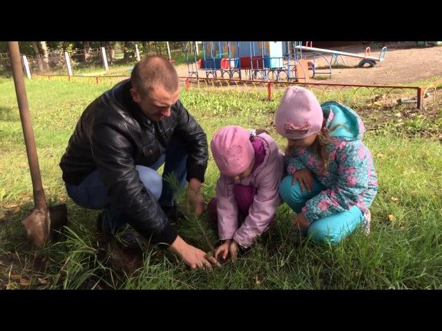 Экоакция в детском саду №306