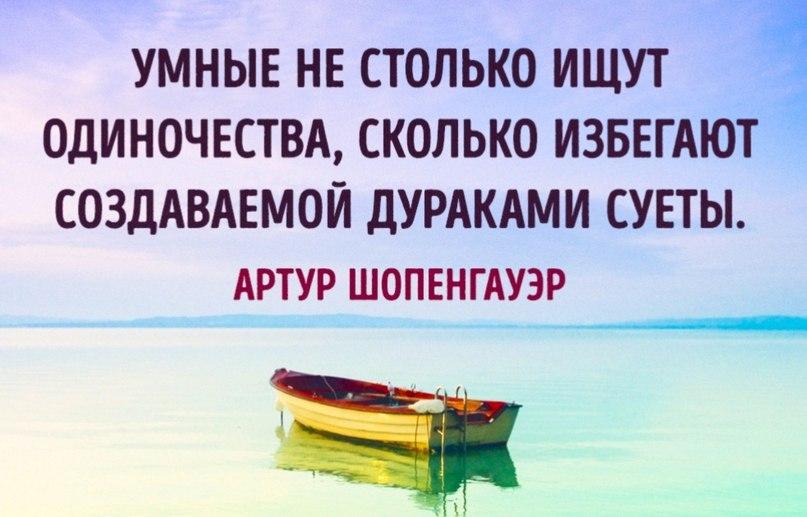 https://cs7057.vk.me/c836638/v836638747/ae54/i3pTLv2l02E.jpg