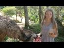 Живу с животными / Paradise Park Samui