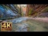 Zion National Park. Autumn - 4K Nature Documentary Film