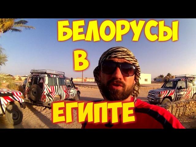 Белорусы в Египте. Сафари. Спасение ребенка! Часть 3