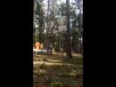 мой полёт на тарзанке. Во время которого меня развернуло спиной, и со всего размаху влетела в дерево.