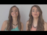 BAD BLOOD - Taylor Swift ft. Kendrick Lamar _ Twin Melody Cover