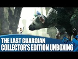PS4 - The Last Guardian (Collectors Edition)