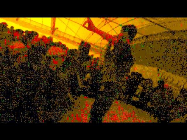 Milizia PostAtomica A Cappella (attenzione ai cavi che non si mischino con l'acqua)!