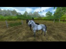 Клип- Дружба человека с дикой лошадью