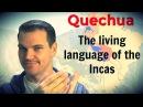 Quechua The Living Language of the Incas