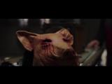 Jigsaw_(2017_Movie)_Official_Trailer