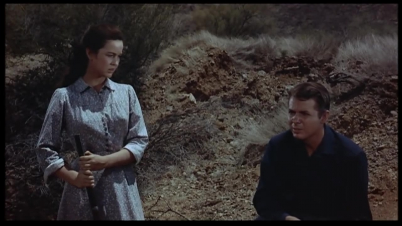 Фильм Стрелки Юбочного форта (1957) The Guns of Fort Petticoat вестерн