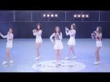 150801 트랜디TREN D 캔디보이 Candy Boy HR 착한콘서트 서울랜드 by drighk 직캠fancam