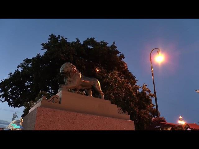Белые ночи. Анна Заруба