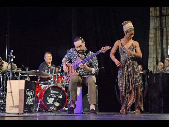 Brenda Navarrete - Rumbero Como Yo (Live - Pt.2)