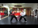 Choy Lay Fut - Medley Fighting Techniques 1 (蔡李佛 - 德 尼 蒂 斯 功 夫 )