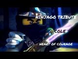 Heart Of Courage - Ninjago (Cole) Tribute