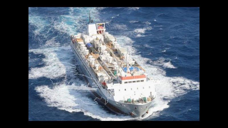 SHIP WORLD SERIES THE BIGGEST LIVESTOCK CARRIER VESSEL