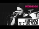 MusicSnake - 1ST STUDIO ALBUM | Indiegogo Campaign