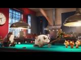 Тайная жизнь домашних животных (2016) HDTVRip | Чистый звук