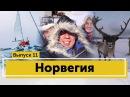 Жёсткий шторм Путешествие на яхтах за полярным кругом и на собачьих упряжках