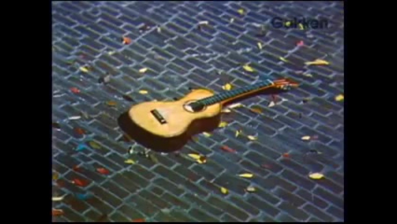 Poron Guitar
